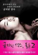 금지된 섹스, 불륜 2 포스터