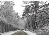 겨울 덕동계곡 가..