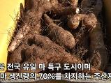 안동마_산마_안동..