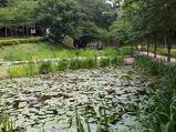 수변공원에서