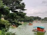 예당호 느린 호수..