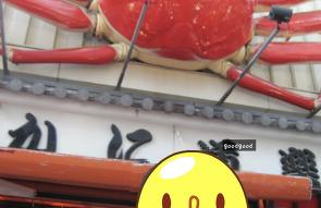 ★오사카 자유여행★난바&도톤보리 유람선