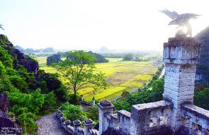 새벽의 항무아와 닌빈의 농경지 (Ninh Binh, Hang ..