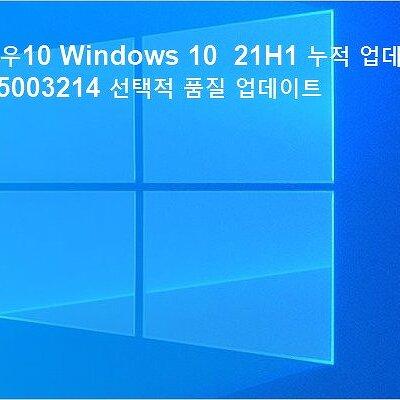 윈도우 10 Windows 10 21H1 누적 업데이트 KB5003214 선택적 품질 업데이트
