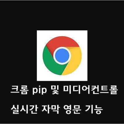 크롬 pip 및 미디어컨트롤  동영상 실시간 자막 영문 기능