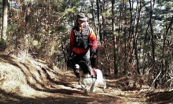 지난 2015년부터 호흡을 맞춘 이승호 핸들러와 인명구조견 수안이 산에서 수색훈련 중이다. /오남119안전센터 제공