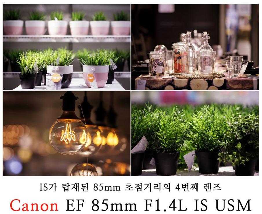 [EF 85mm F1.4L IS USM 리뷰_2] 성능 테스트