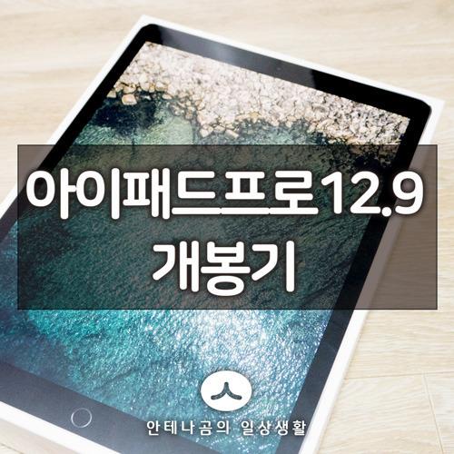 아이패드 프로 2세대 12.9 LTE버전 (2017) 개봉기