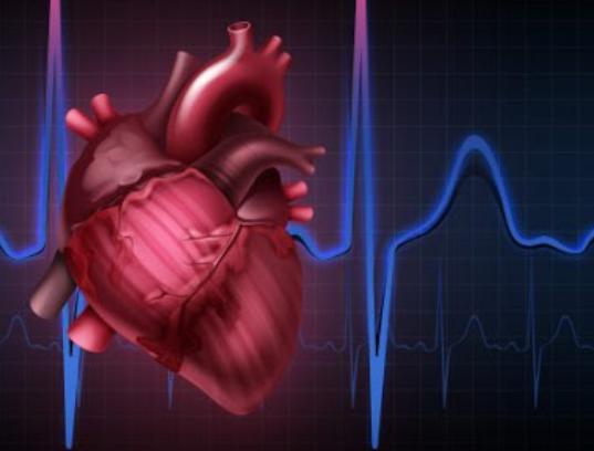 심장 부정맥 자세히 알아보기