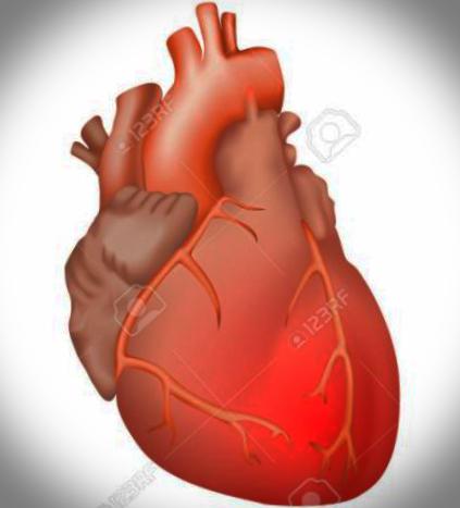 심낭염 증상과 원인 제대로 알고 계신가요?
