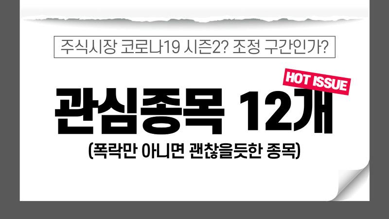 주식시장 조정? = 기회, 관심종목 12개 공개