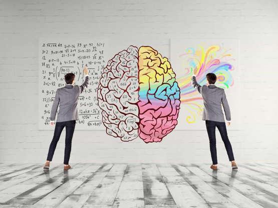 좌뇌형 vs 우뇌형, 당신의 뇌는 어느 쪽인가요?