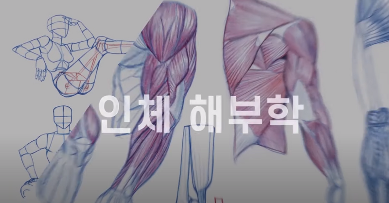 【김락희의 인체 드로잉】(요약ver.) 10분만에 공부하는 몸통박스 그리기!