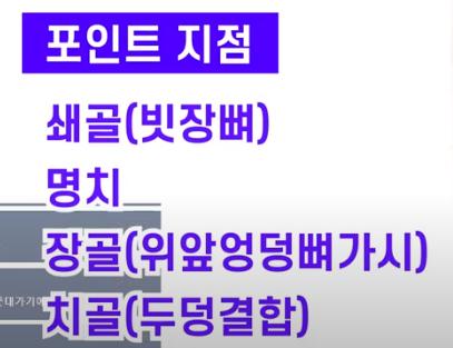 【김락희의 인체 드로잉】(요약ver.) 다양하게 움직이는 허리의 몸통박스와 몸통근육