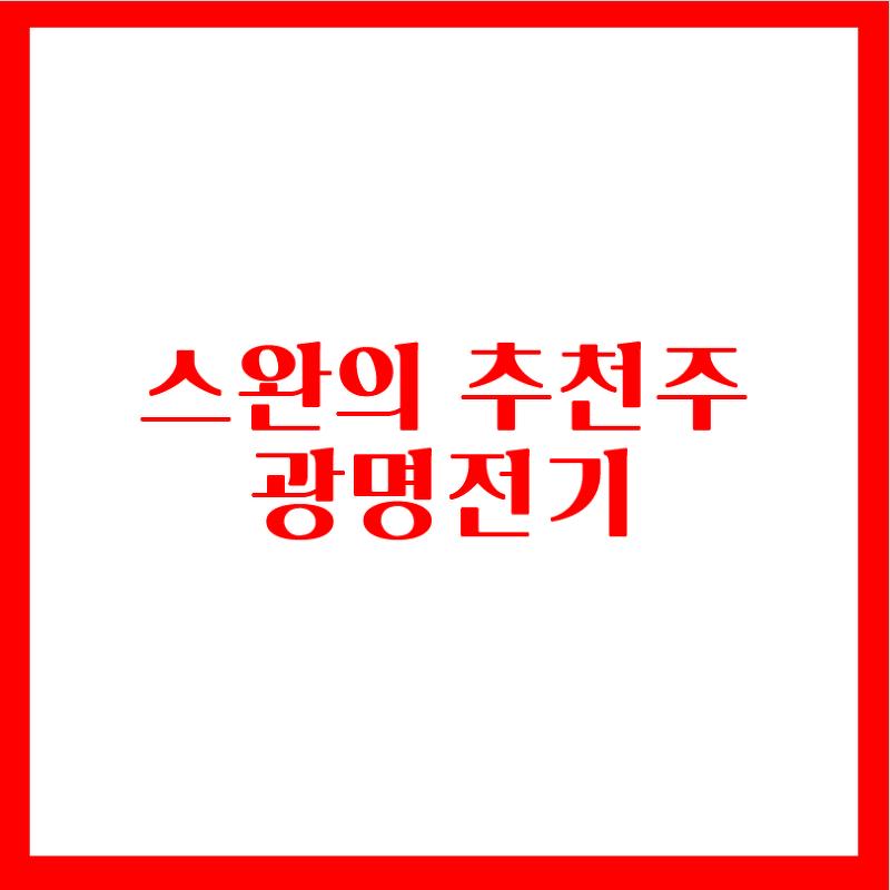 스완의 무료추천주 - 광명전기