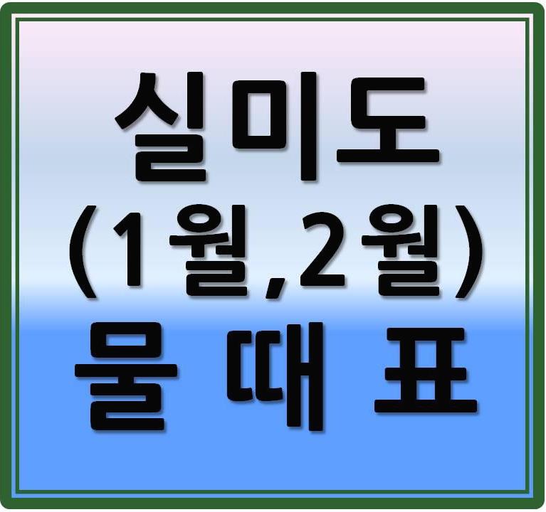 실미도 물때표(바닷길,바다갈라짐)2021년 [1월~2월]