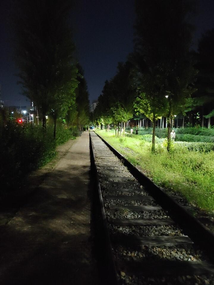 밤산책 걷기좋은 길2