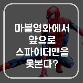 스파이더맨 앞으로 마블영화에서 못보나?
