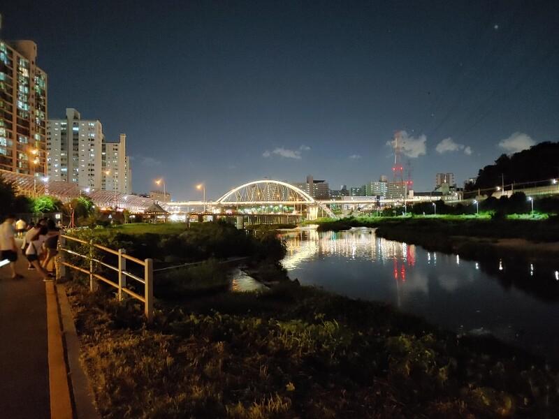 밤 산책  걷기좋은 길 1