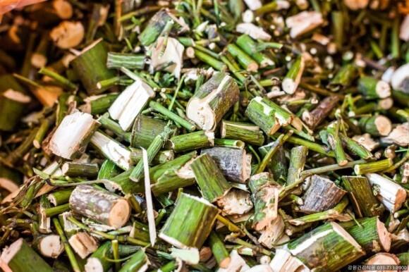 건강에 좋은 벌나무의 효능과 부작용 그리고 구매처