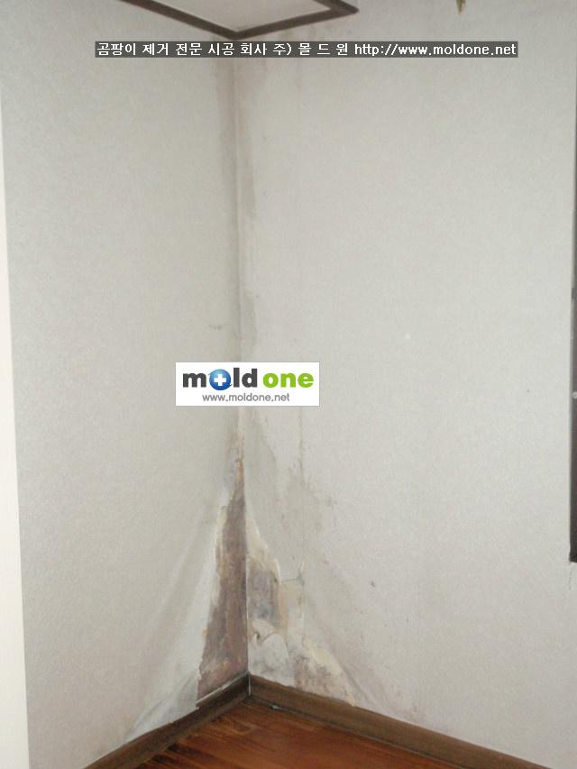 벽지곰팡이는 왜 모서리 코너 부분에만?