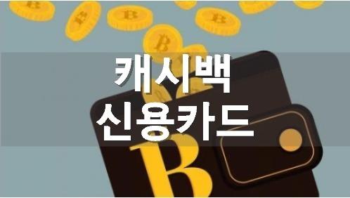 캐시백 신용카드 추천 BEST 3