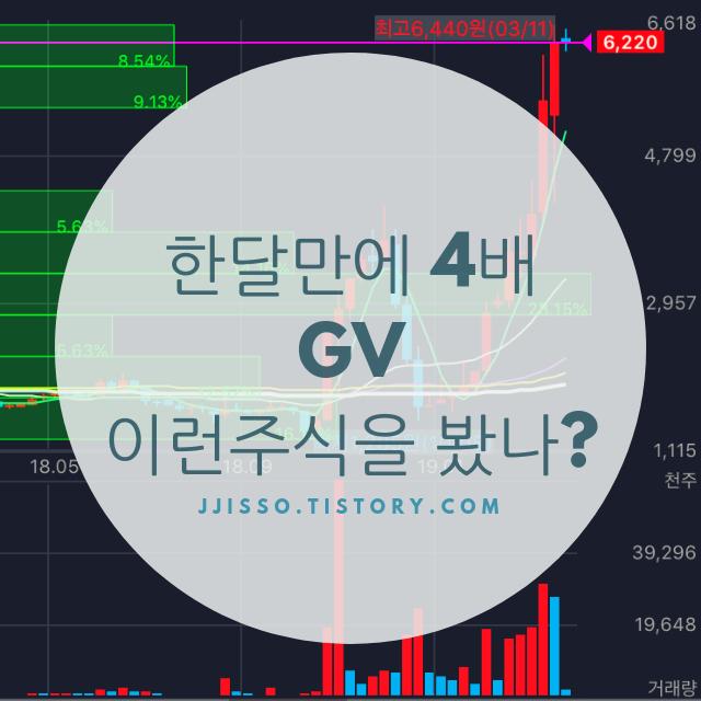 GV!! 2개월만에 4배 주가 폭등!! 레알??