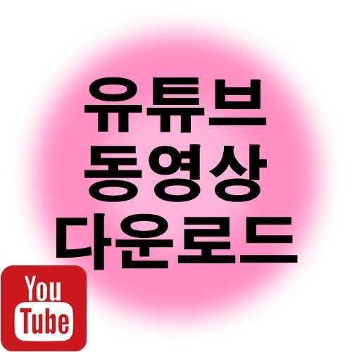 유튜브 동영상 다운로드 하는 방법 바이러스 걱정 NONO