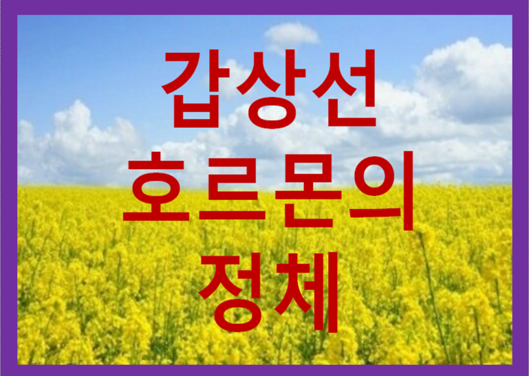 갑상선 호르몬의 역할 / 좋은정보