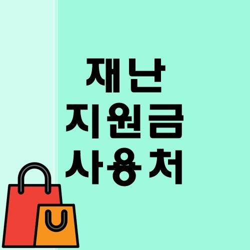 정부 재난지원금 사용처 총정리 - 신용카드 체크카드 선불카드