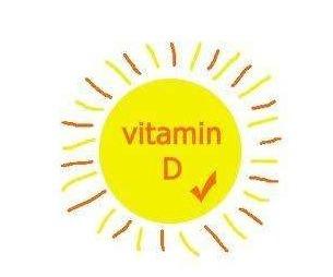 비타민D 섭취하는 방법들