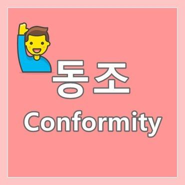 동조 뜻 예시 Conformity