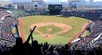 야구 승부조작은 왜 재발됐을까?