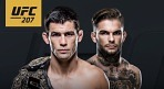 크루즈 vs 가브란트, UFC 207 타이틀전