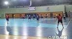 한국 핸드볼, 대표팀 선발 경쟁체제 및 상비군 도입