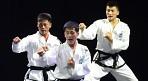 평창올림픽 때 남북한 태권도 합동공연 추진한다