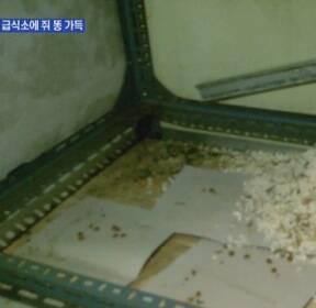'쥐 똥이 가득'..위생불량 요양병원