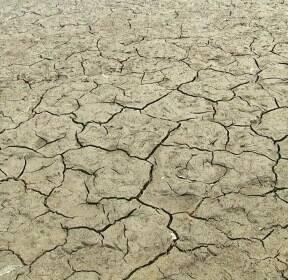 극심한 가뭄에 저수지마다 물 부족