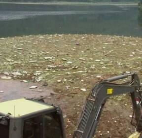 충북 폭우에 떠내려온 쓰레기 2500톤..충주호 몸살
