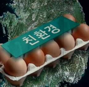 달걀 농장 60곳서 살충제 추가 검출..껍데기만 친환경