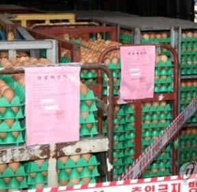 살충제 검출로 폐기되는 계란