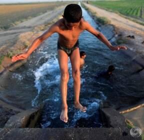 시리아, 더위 식히러 풍덩!