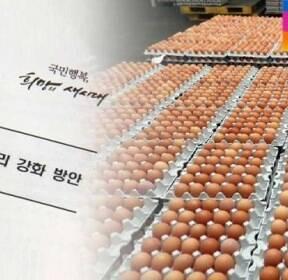 [단독] 박근혜 정부 때 달걀 안전성 2차례 건의..'연기' 처분
