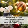 새해복많이~~..