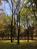 양재 시민의숲..