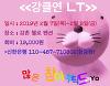 2019년 2월 7일(목)~2월 8일(금) LT 행사 안내
