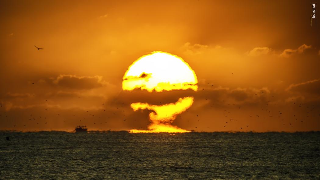 2020년 새해 첫 태양의 빛 해돋이