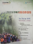 울산 2019 거북이 마라톤대회 (2019-3-31(일))
