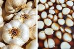 40여 종의 항암 식품들 중에서 최정상인 마늘효능 & 마늘 장아찌