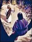 이 사람도 그리스도의 자녀다! (누가복음 19장 1-10절)